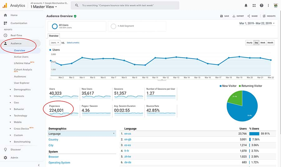 google analytics pageviews