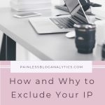 why you should exclude your ip address